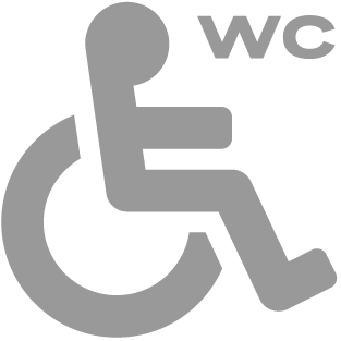 Toilet for disabled persons